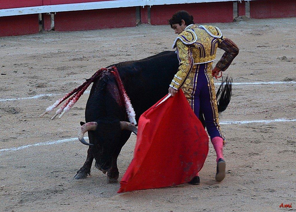 Feria-2012-Corrida-Vendredi-DSC-0369.jpg
