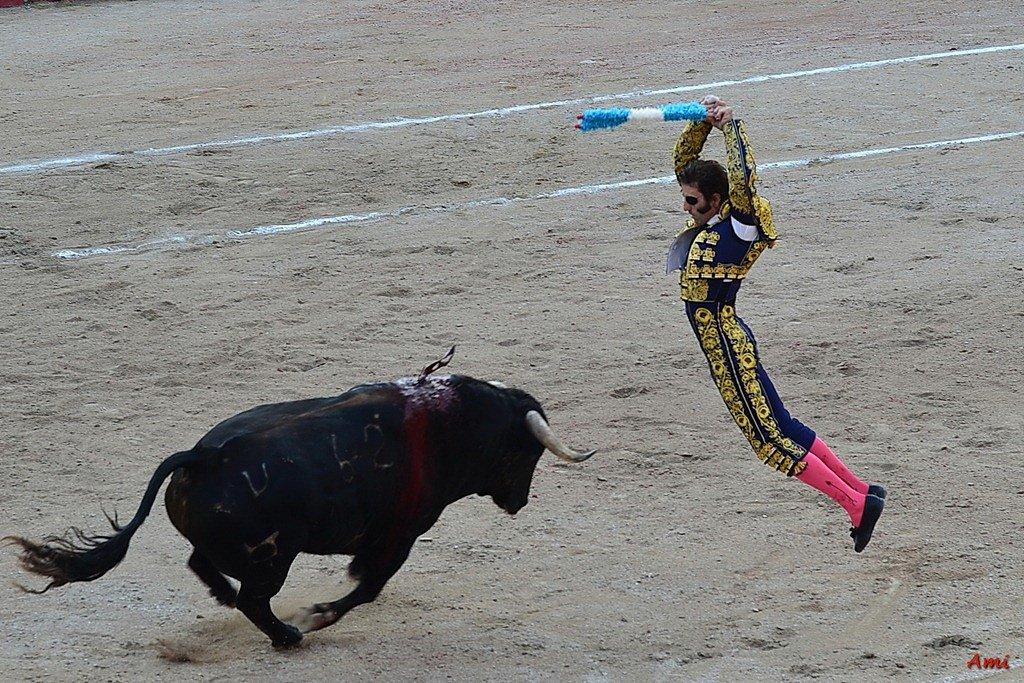 Feria-2012-Corrida-Vendredi-DSC-00601.jpg
