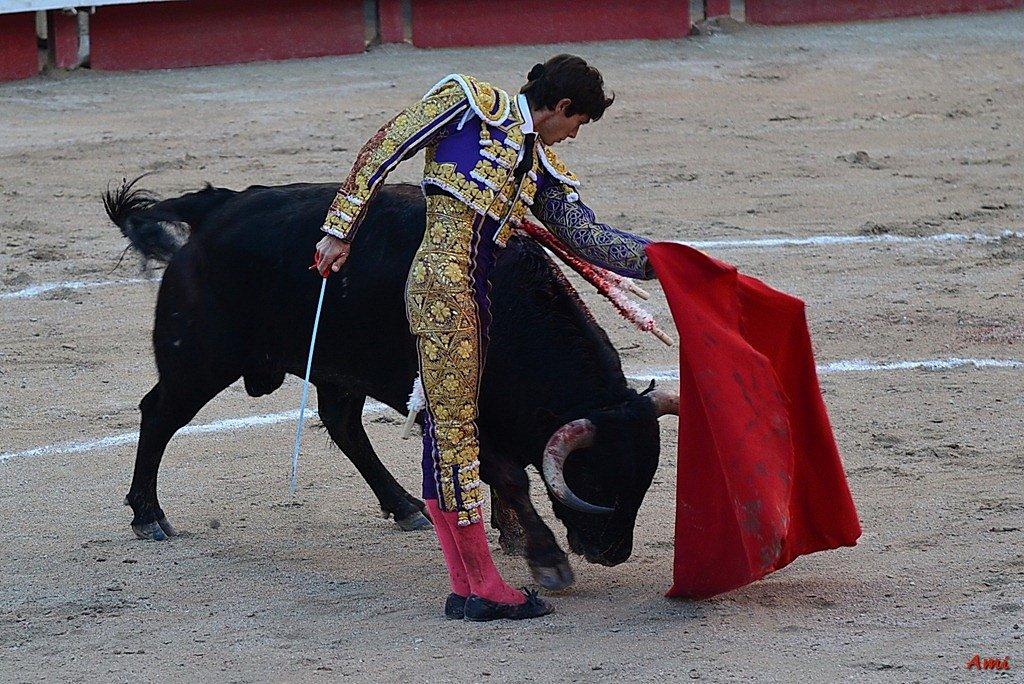 Feria-2012-Corrida-Vendredi-DSC-03671.jpg