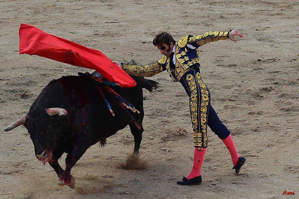 Feria-2012-Corrida-Vendredi-DSC-97651.jpg