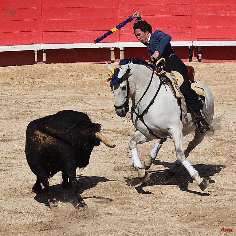Feria-Arles-2012-DSC-1141.jpg