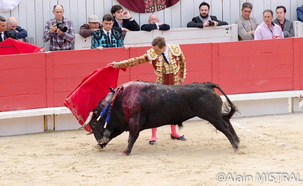 Feria-2015-Samedi-5583.jpg