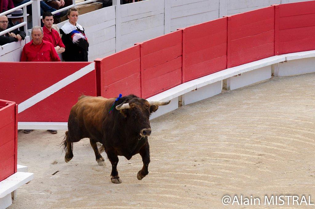 Feria-2015-Samedi-5638.jpg