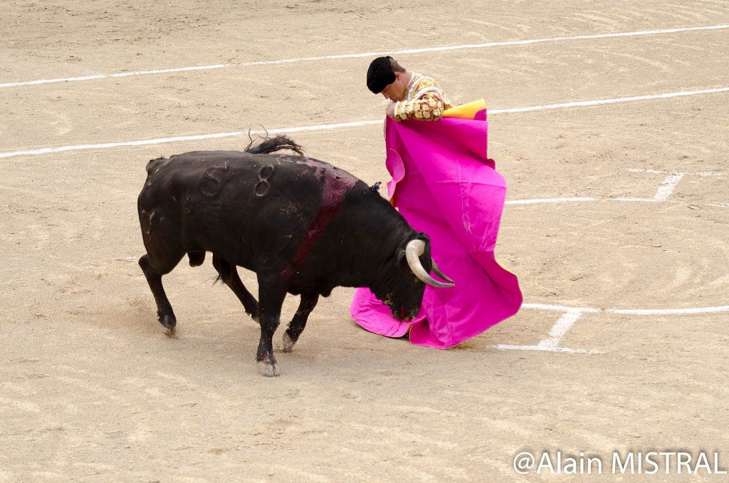 Feria-2015-Samedi-5485.jpg