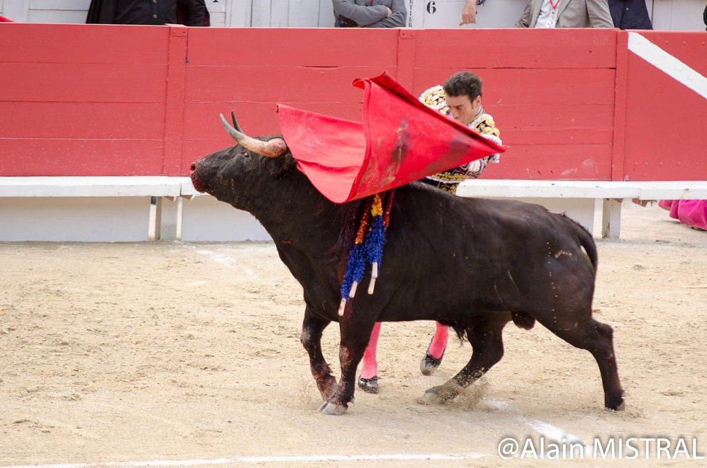 Feria-2015-Samedi-5504.jpg
